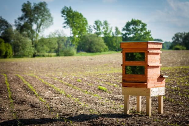 "A New Bee Keeper Solution: Thermosolar Hive — ""Let sunshine do the work!"""
