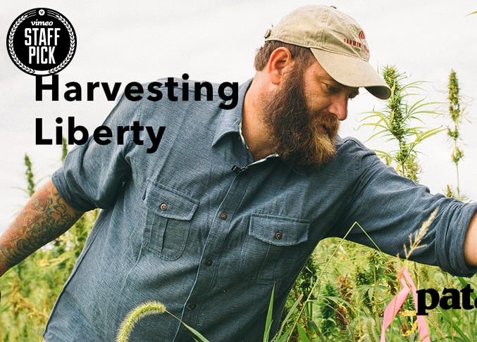 Allow American Farmers and Veterans to Grow Hemp